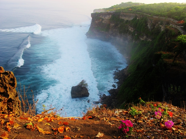 Cliffs and big surfable waves - but sadly no White-tailed Tropicbirds - at Uluwatu, on Bali's south-west coast.