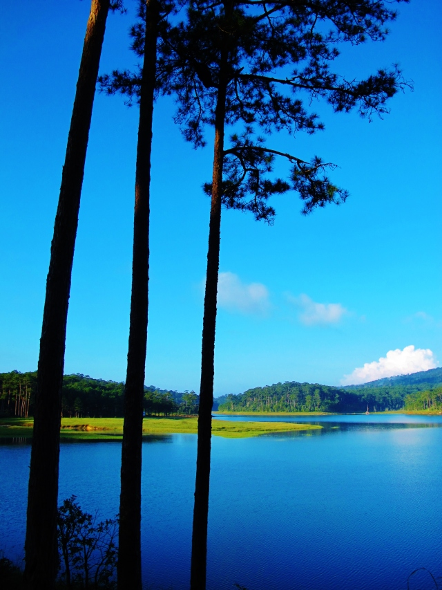 Tuyen Lam Lake - a very picturesque birding location.