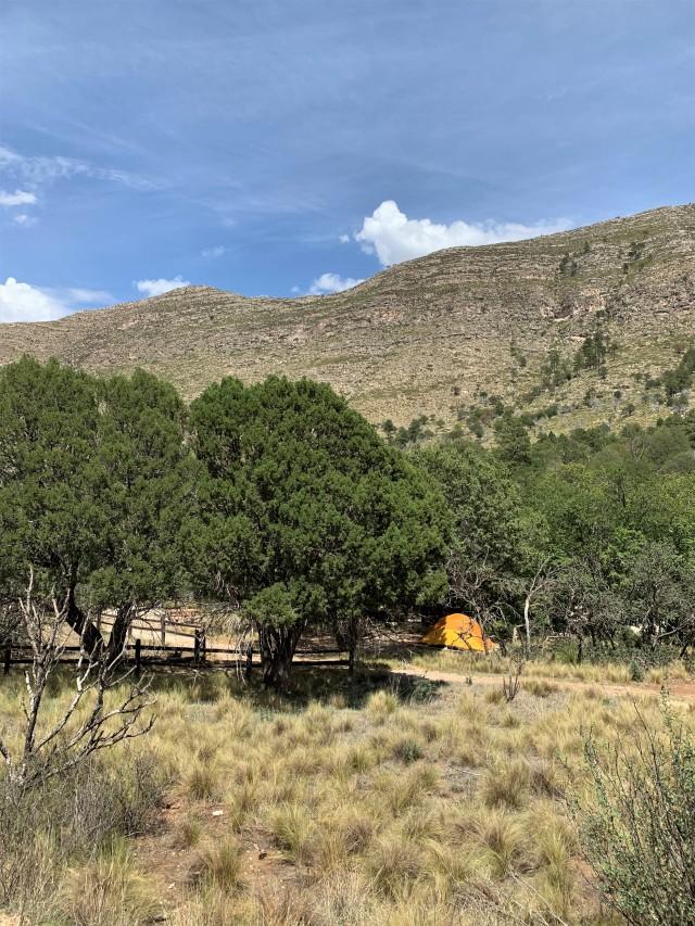 Dog Canyon campsite