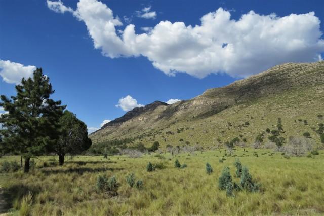 Dog Canyon Indian Meadows